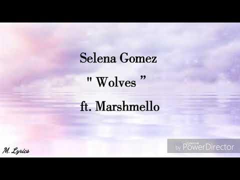 Selena  Gomez - Wolves Ft.  Marshmello (lyrics)