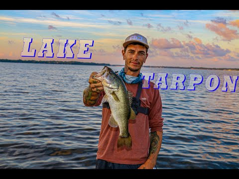 Lake Tarpon Bass Fish Clip