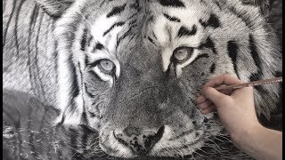 Hyperrealistic Tiger Drawing / 85 Hour Time-lapse
