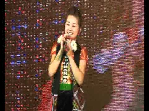 Yen Linh Hoa nui facelook 2011