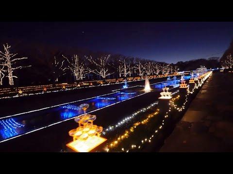 Showakinen park illumination