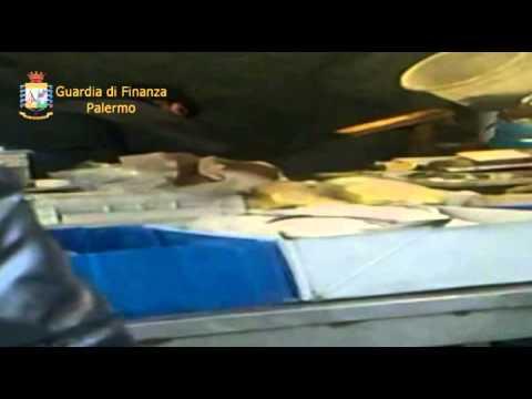 Finanza scopre falso invalido a Palermo