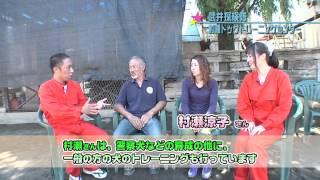 琉球放送2012年9月20日放送分 村瀬ドッグトレーニングセンター 警察犬の...
