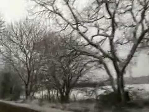 DEVON U.K in snow 19jan.2013.(by Mario)mp4