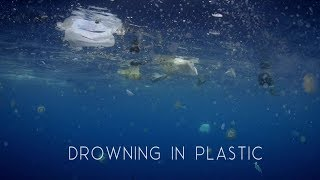 """drowning in plastic"" BBC documentary BEST OF"