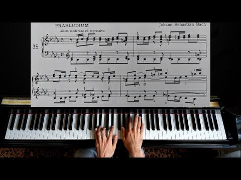 Bach - Prelude and Fugue WTC1 No. 22 in b flat minor BWV 867 | Piano Tutorial