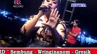 Tembang Tresno   Devi Aldiva New Tesa Live Pedagangan Wringin anom 2015