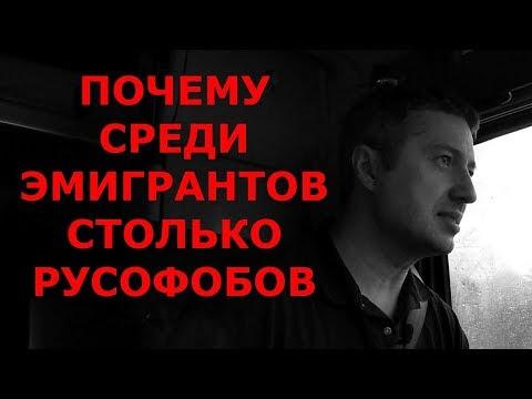 ПОЧЕМУ СРЕДИ ЭМИГРАНТОВ СТОЛЬКО РУСОФОБОВ / Блогер и Хаски / Блогер БН