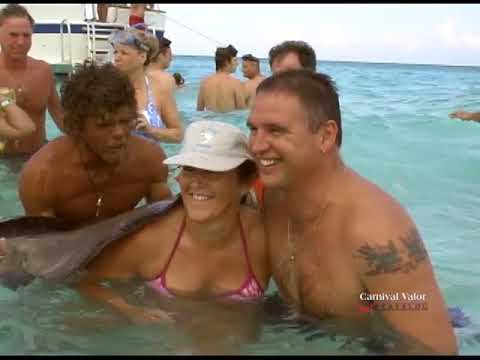 Grand Cayman Turtle Farm and Stingray City Tour