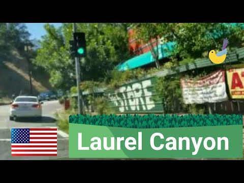 Los Angeles Driving Tour:   Laurel Canyon