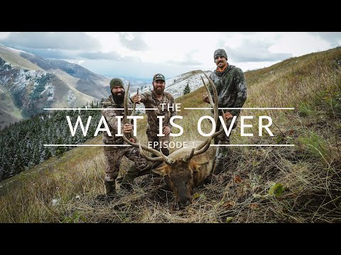 The Wait Is Over – Episode 1 – Rifle Elk Mini Series