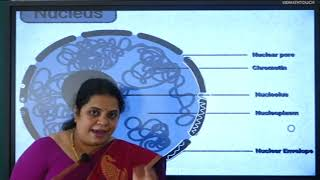 I PUC | Biology | Cell- The Unit of Life - 06