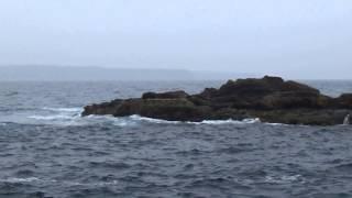 紀伊有田 地の大島