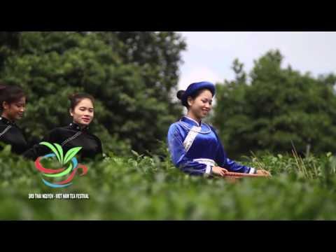 3rd TEA FESTIVAL, THAI NGUYEN – VIET NAM 2015