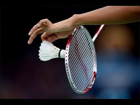 Image result for badminton images