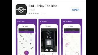 How to Ride a Bird Scooter: Full Instructions + Free Ride Promo Code: BZWZMJZ