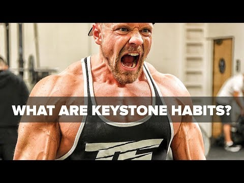 4 Keystone Habits to Optimize Your Life!   Tiger Fitness
