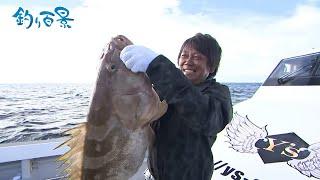 【釣り百景】#349 海底の大物・クエ連発!玄界灘でイカの泳がせ釣り
