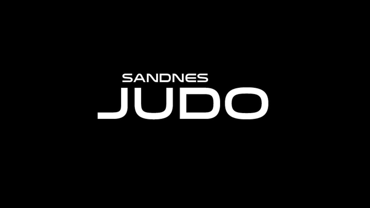 Judofestival T skjorte til barn 5 stk. Velg størrelse
