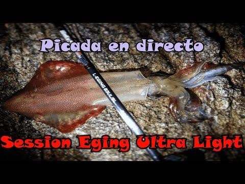 Sesión Eging Ultra Ligero...Picada En Directo
