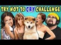 ADULTS REACT TO TRY NOT TO CRY CHALLENGE