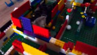 Dummy @ The lego maze [Hamster song]