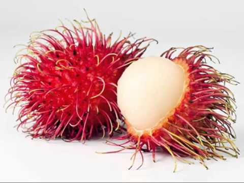 10 healthy fruits rambutan fruit
