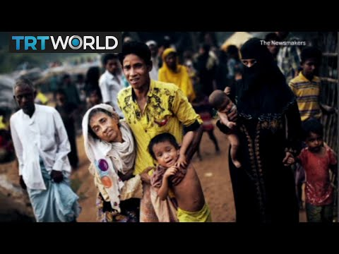 Rohingya genocide, Gas attacks in Syria and Japanese whale hunting