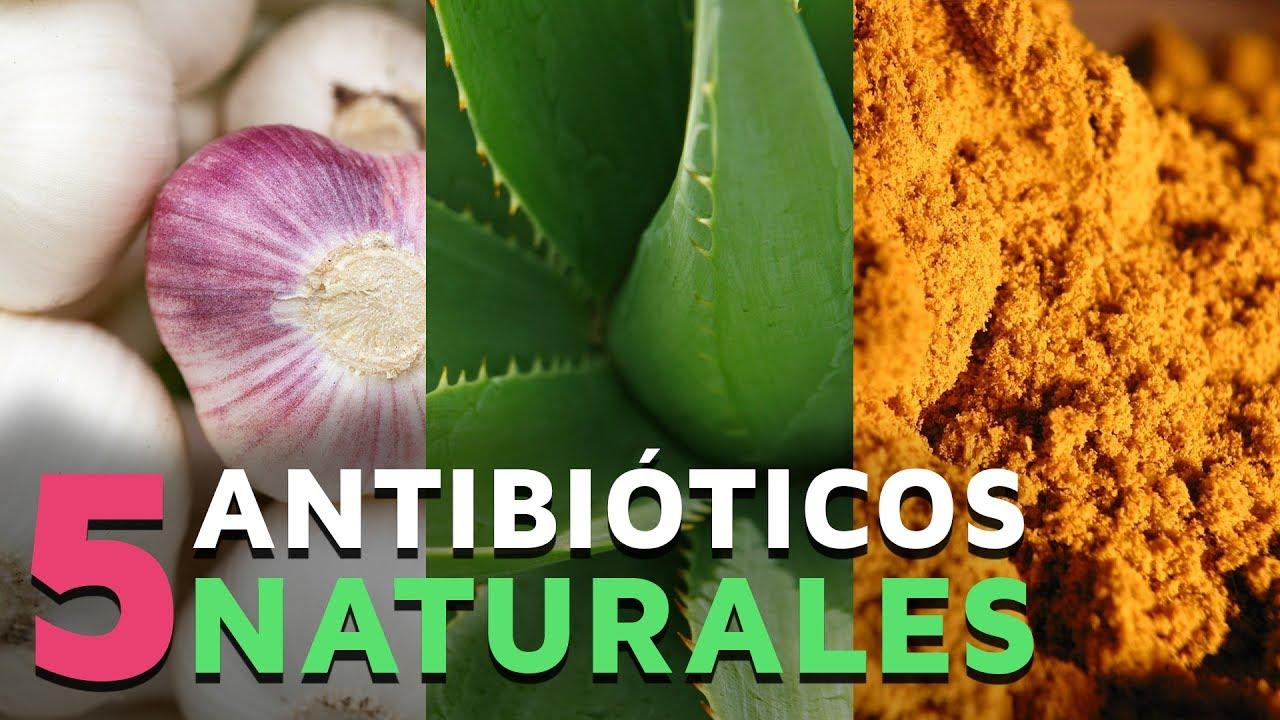 Como preparar un antibiotico casero