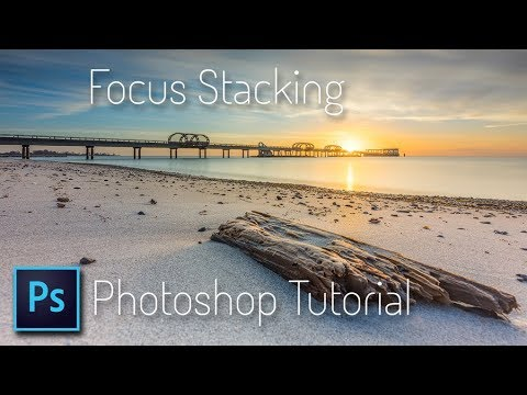 Focus Stacking - Photoshop Tutorial