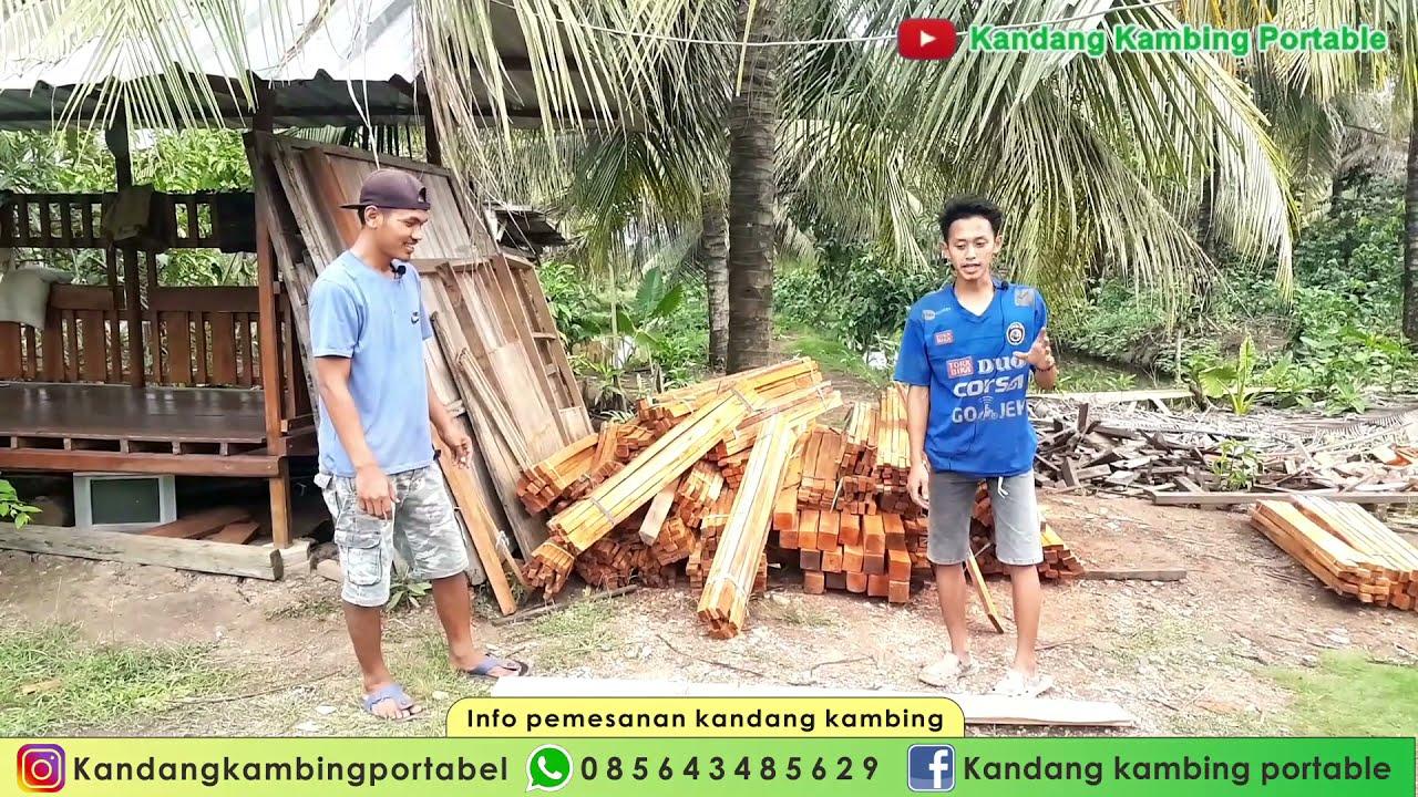 Review Bahan Baku Kandang Kambing & Kandang Domba Kayu Maghoni