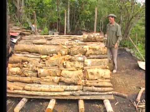 Fabrication du charbon de bois youtube for Fabrication charbon de bois