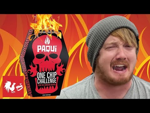 THE ONE CHIP CHALLENGE! | RT Life