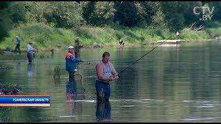 Жителі обурені введенням оплати за риболовлю в межах Лоєва