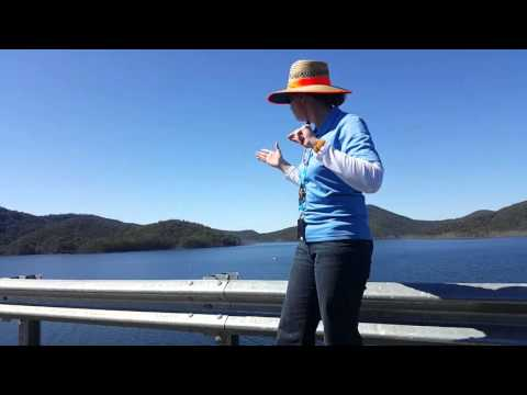 NYP Hinze Dam Tour