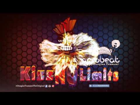 AFRO BEAT REMIX 2016-2017 ( DJ DOUGLAS TSUNAMI)