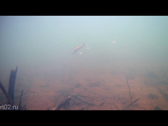 Копия воблера ZipBaits Orbit 90 SP DR от Lingyue (подводная съемка)