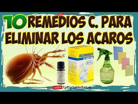10 Remedios Caseros para Eliminar los Ácaros - Elimina los Ácaros de tu Cama Rápidamente