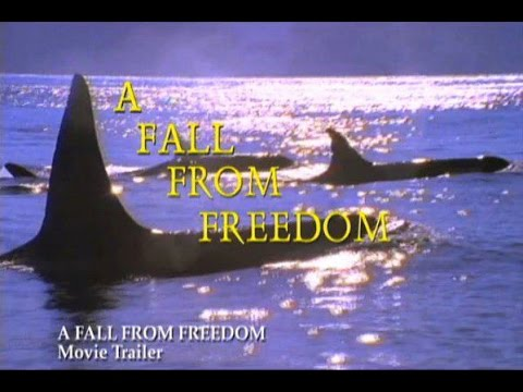A Fall From Freedom ( Sous-titré Français )