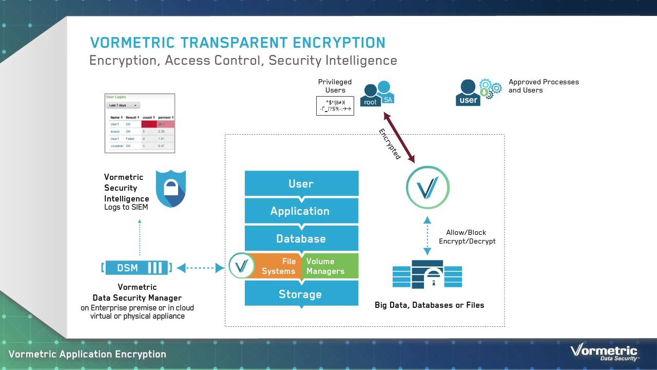 Introduction To Vormetric Application Encryption