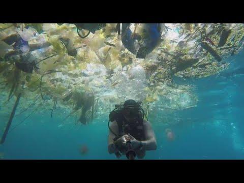 2 Minutes Angoissantes Dans Un Mer Polluée Par Le Plastique à Bali