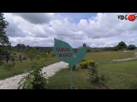 Berlibur ke Kebun Raya Massenrempulu Kabupaten Enrekang Sulawesi selatan