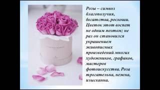 Какие цветы дарят насвадьбу