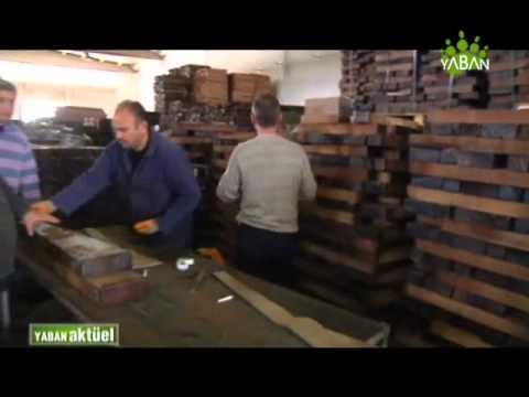 Hatsan Fabrika ziyareti-part6 | Hatsan factory visit by Yaban TV-part6