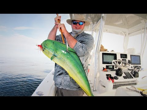 2018Sept28 Fishing Offshore Mississippi On The Sea Sharp With Keith Elder And Josh Kittrell