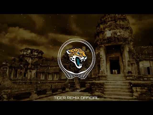 Remix melody kop mr Do -Tiger Remix official