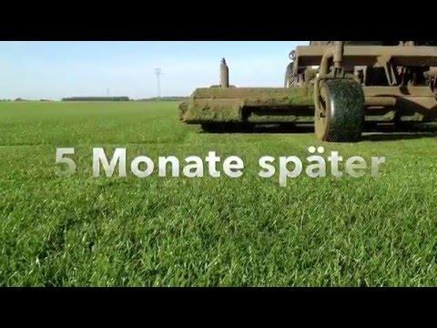 fertigrasen-farm_winkel-kg_video_unternehmen_präsentation