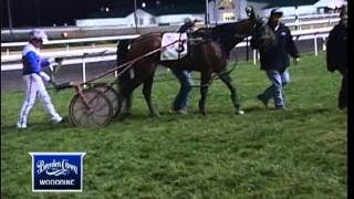 2012 Breeders Crown Three-Year-Old Colt Trot