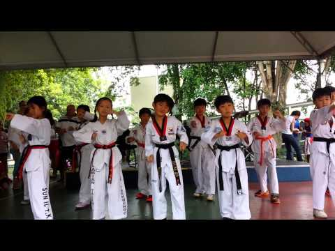 British college of Brazil Taekwondo