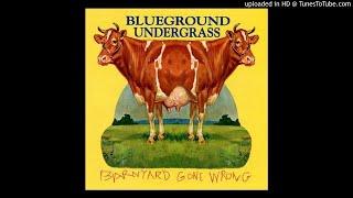 Blueground Undergrass - Roger Judy